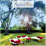 destination-wedding-palanpur